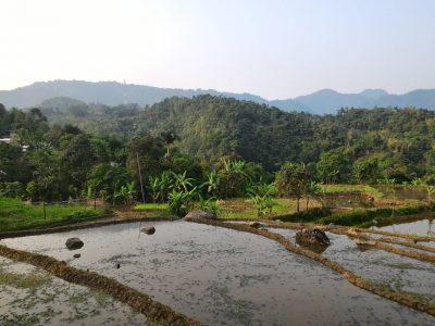 Bogor Halimun National Park Tour 04