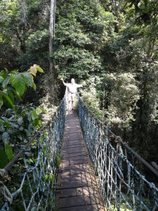 Bogor Halimun National Park Tour 16