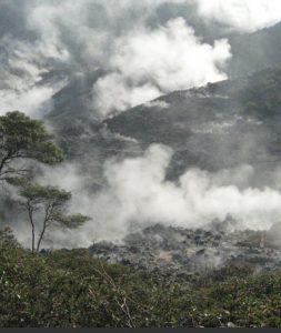 Bogor Halimun National Park Tour 44